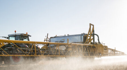 Top Concerns About Glyphosate Include Birth Defects and Cancer