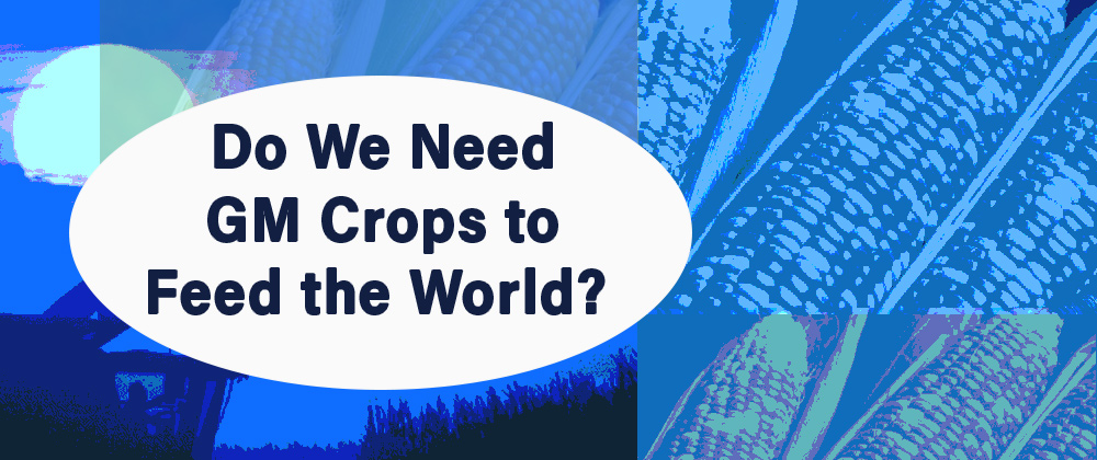 Do We Need GM Crops to Feed the World?