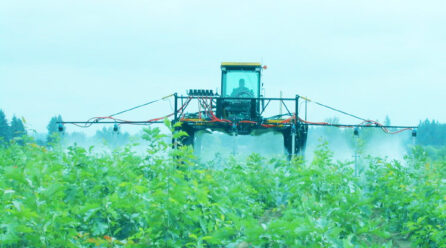 Massive Rise in Use of Glyphosate-based Herbicides