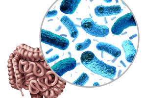Glyphosate and Roundup Disrupt the Gut Microbiome by Inhibiting the Shikimate Pathway
